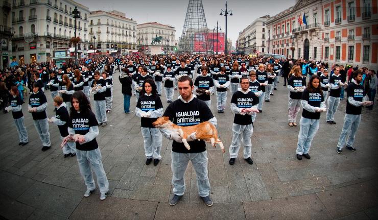 Animal Equality || International Animal Rights Day 2011